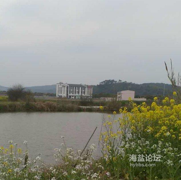 澉浦新市镇农贸市场正式投入使用,澉浦集镇老农贸市场随之关闭,买卖如何?