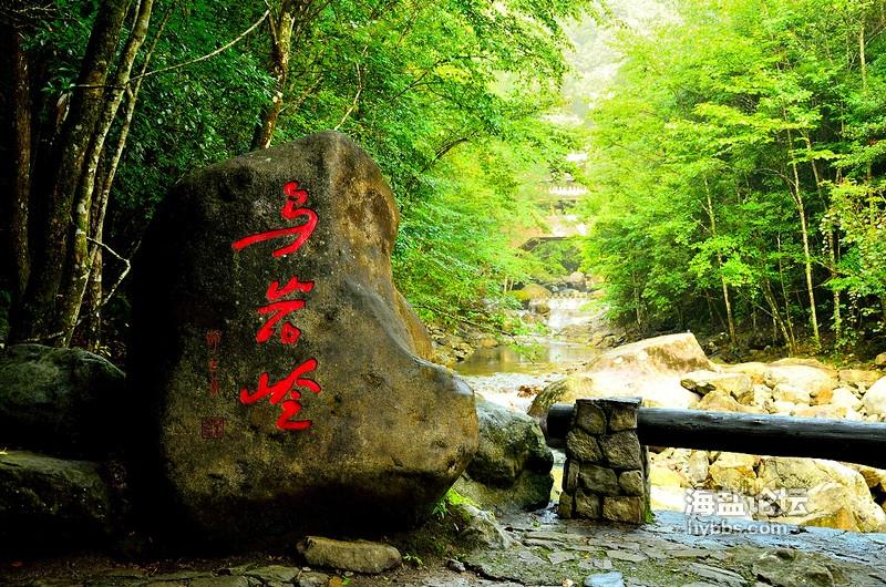 乌岩岭景区.jpg