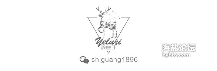 野鹿子 微信号.jpg