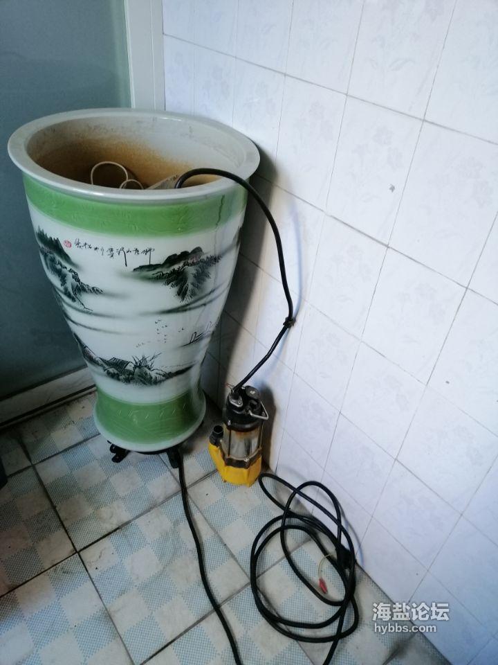 电动鱼缸 450元